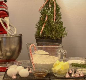 Christmas Biscotti Ingredients