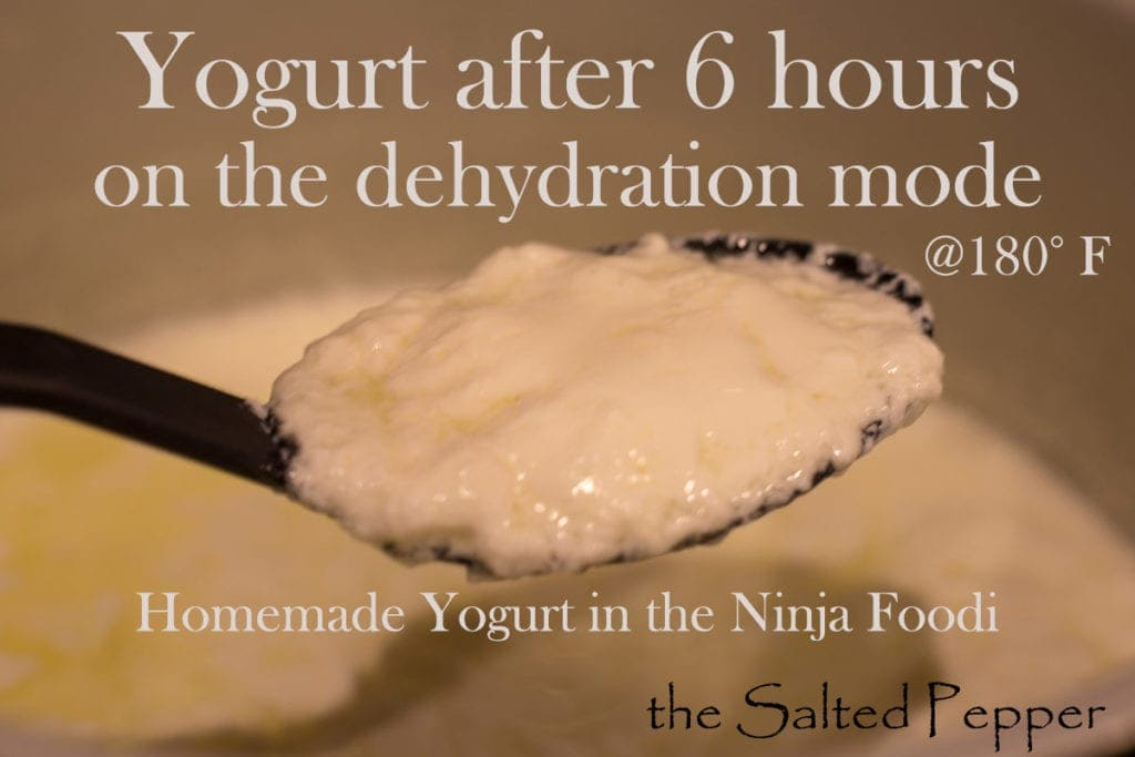 Homemade yogurt in the Ninja Foodi 6 hours