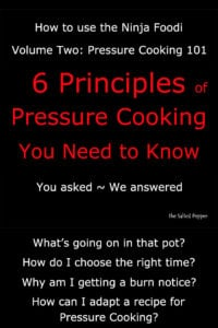 Pressure cooking 101 graphic