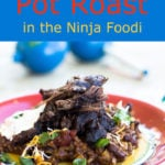 Mexican Pot Roast with rice and beans on a colorful plate