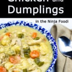 chicken and dumplings in a blue bowl